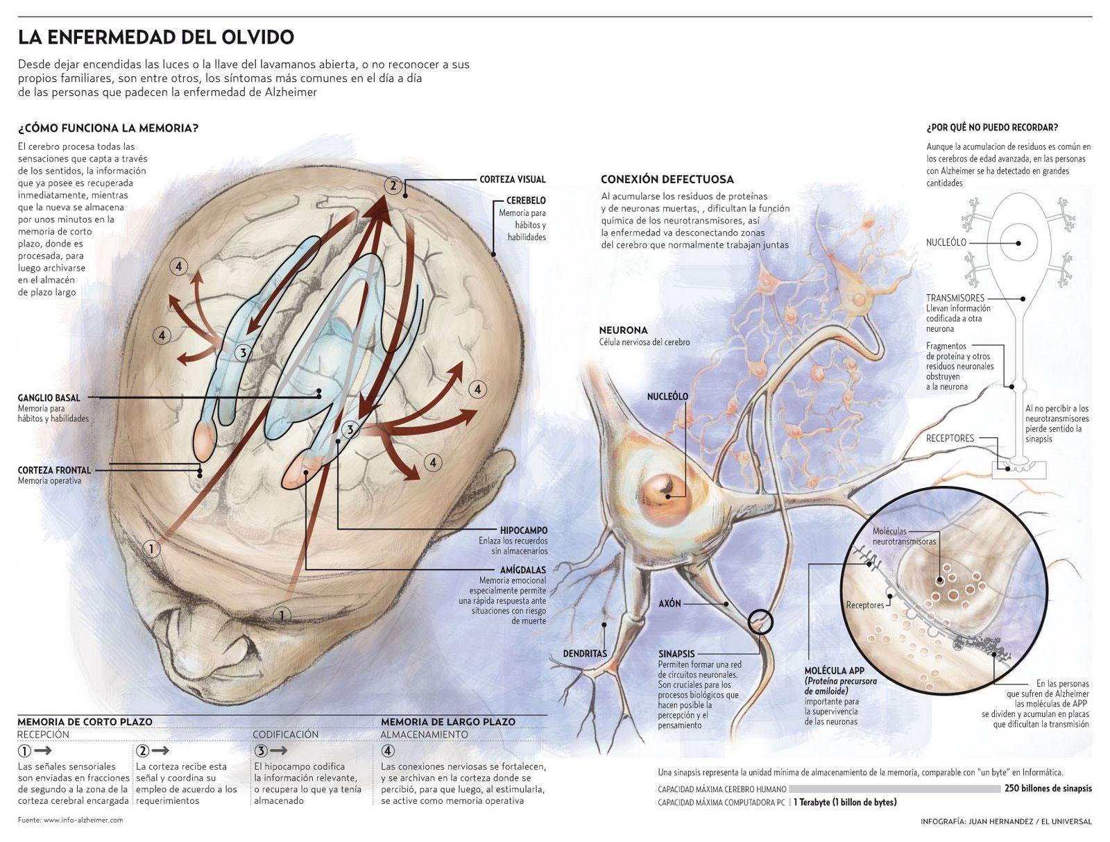 Infografía: Juan Carlos Hernández